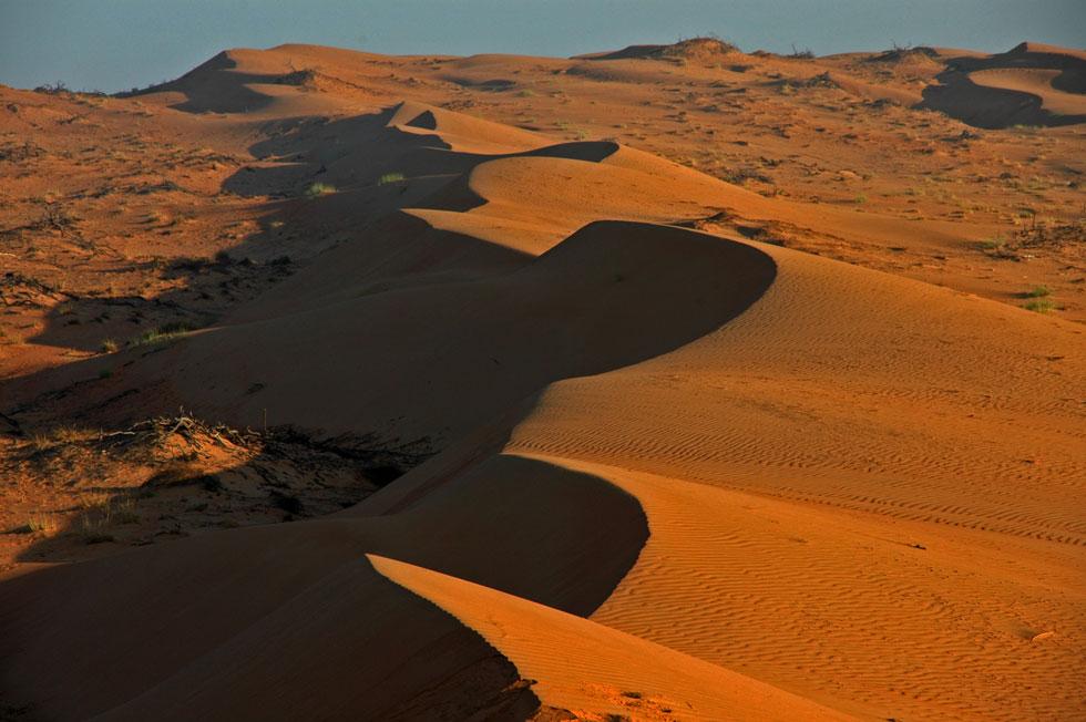 desert-dawn-dunes-copyright