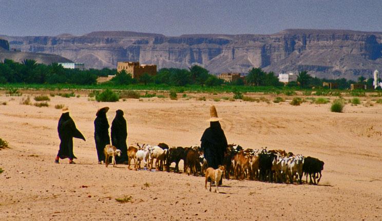 empty-quarter-desert-nomads