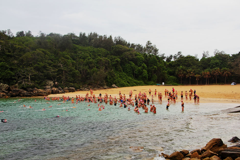 Shelly Beach waiting party.