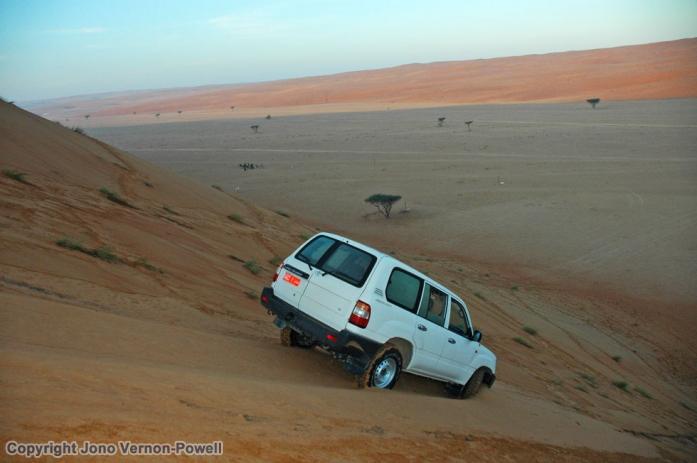dune-sliding-copyright-jono