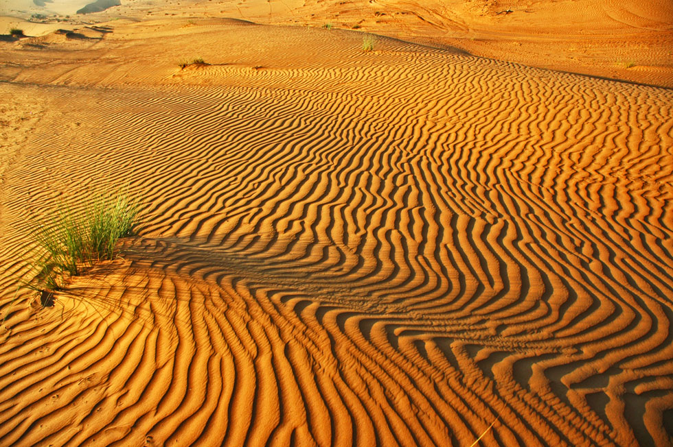 wahiba-sand-sea-copyright-j