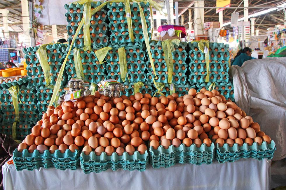 south-american-eggs-copyrig