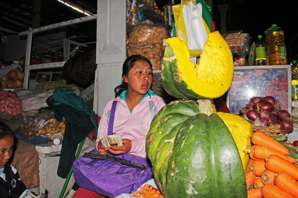 south-american-pumpkin-sell