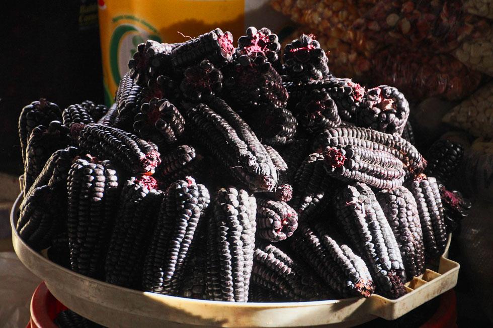 south-american-purple-corn-