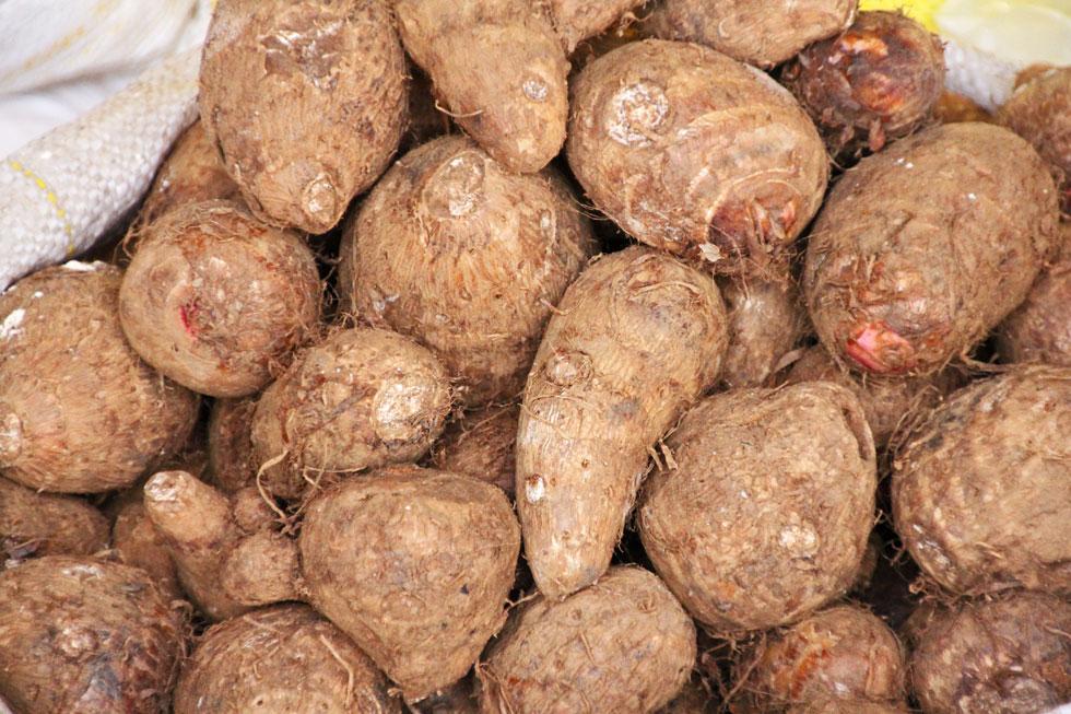 south-american-sweet-potato