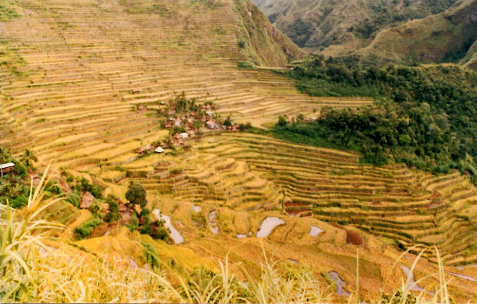 bontoc-terracing-philippine