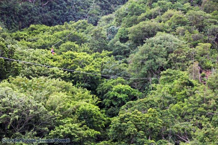 zip-wire-mauritius-copyrigh