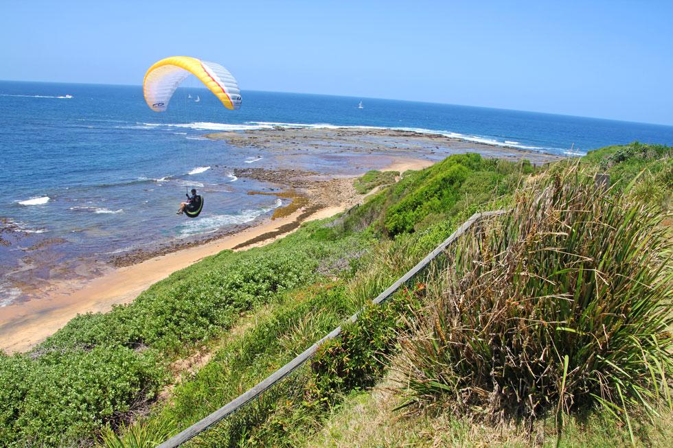 para-glider-sydney-copyrigh