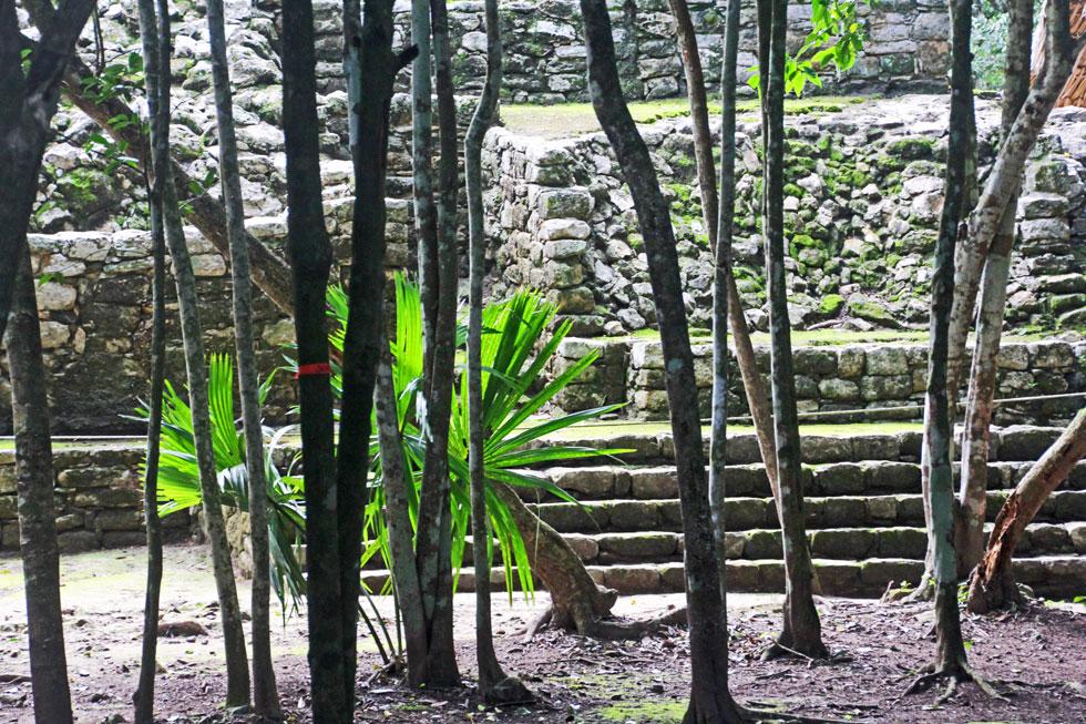 coba-stone-jungle-copyright