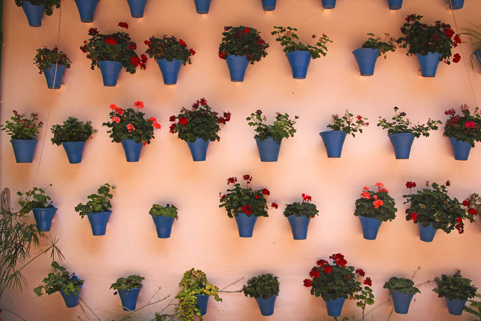 flower-pots-andalusia-copyr