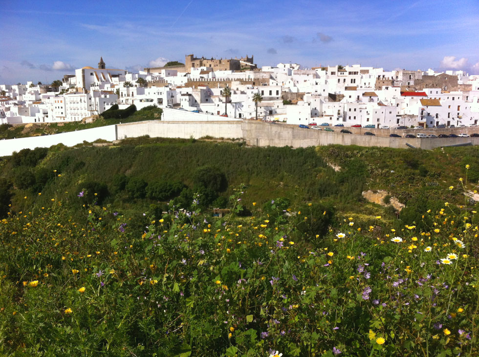 white-village-flowers-copyr