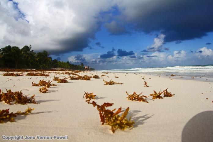 sian-kaan-beach-sky-copyri